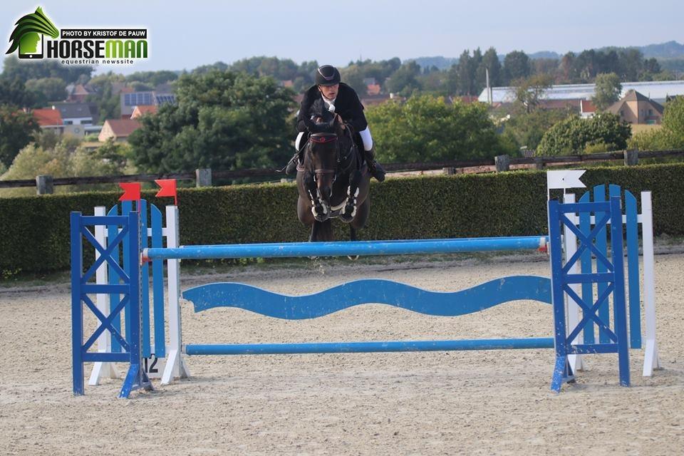110b3ff7ce8 Glenn Van Riet wint de Grote Prijs bij Stal Hulsterlo   Horseman